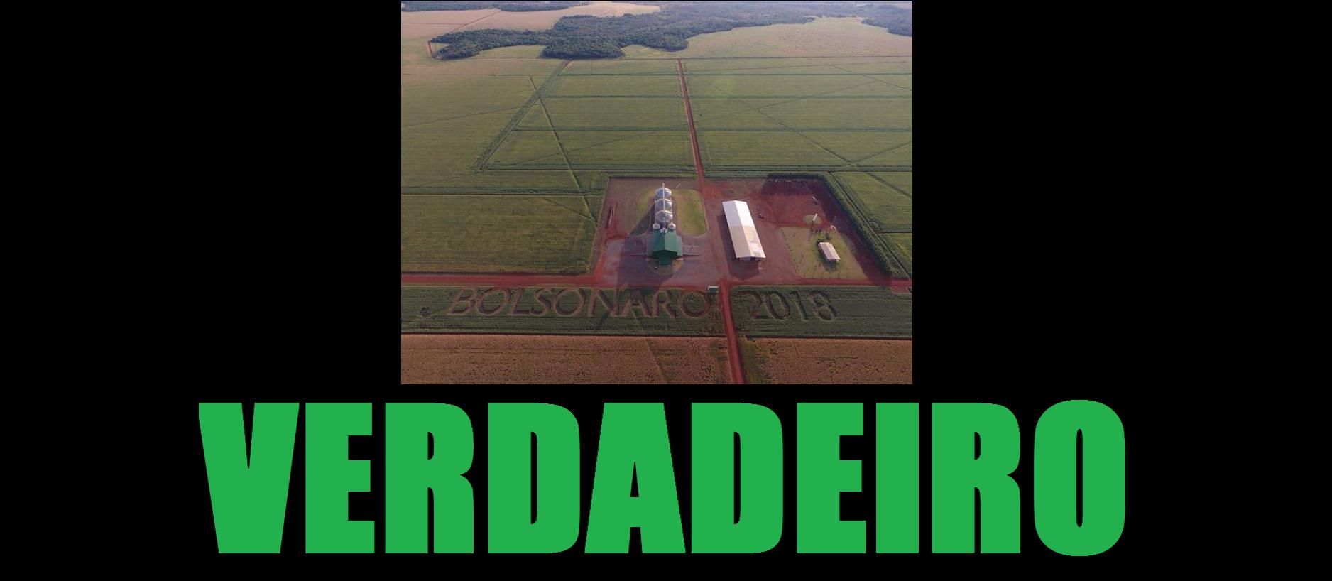 Plantação em Sidrolândia com inscrições de apoio à candidatura de Jair Bolsonaro, postado originalmente em 15 de julho de 2018