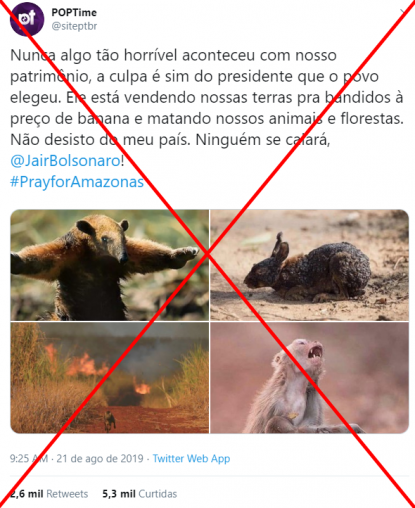 Incêndios Na Floresta Amazônica São Alvo De Desinformação